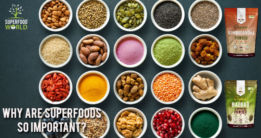 Why Are Superfoods So Important?