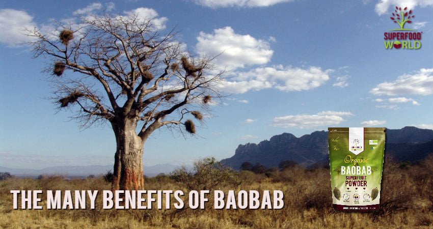 The Many Benefits of Baobab