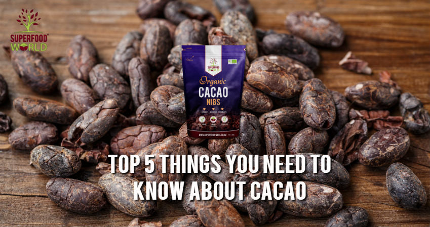 Top 5 Things You Need to Know About Cacao