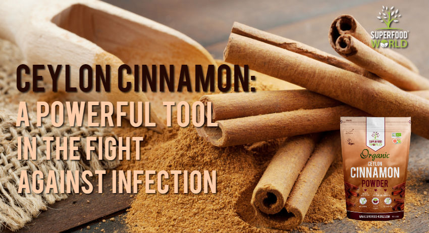Ceylon Cinnamon: A Powerful Tool to Fight Against Infection