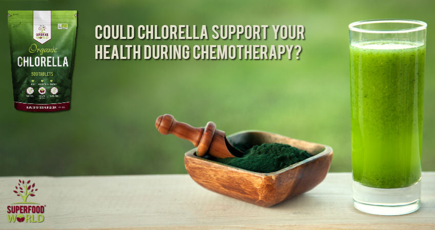 Could Chlorella Support Your Health During Chemotherapy?