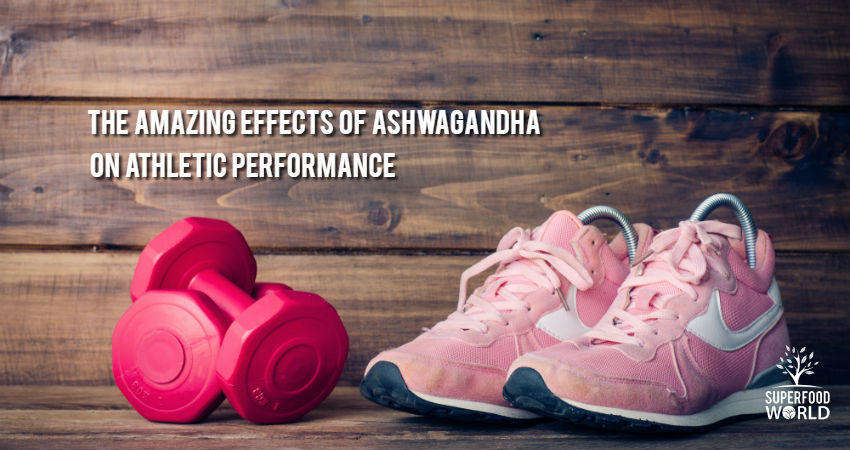 The Amazing Effects of Ashwagandha on Athletic Performance