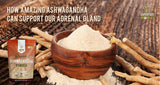 Why Our Adrenal Gland Health Is so Important ... and How Ashwagandha Can Help