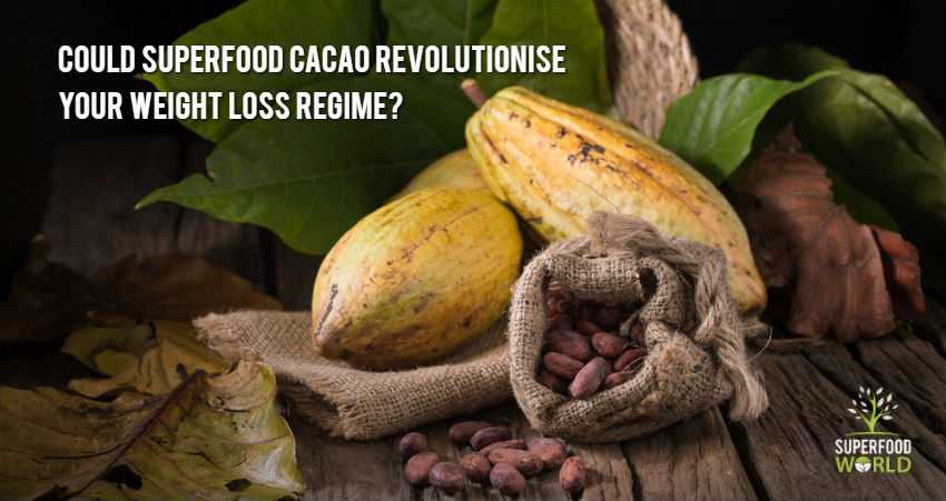 Could Superfood Cacao Revolutionise Your Weight Loss Regime?