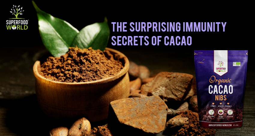 The Surprising Immunity Secrets of Cacao