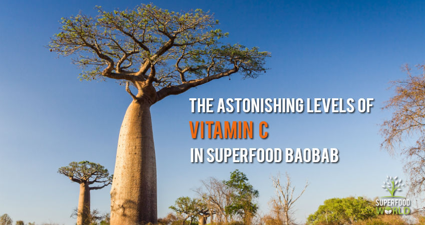 The Astonishing Amount of Vitamin C Found in Superfood Baobab