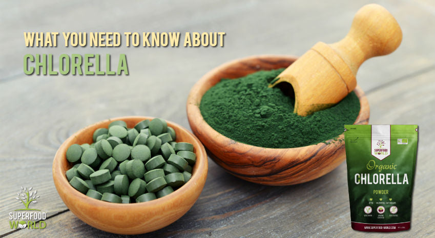 What You Need to Know about Chlorella