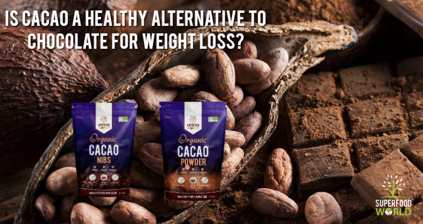 Is Cacao a healthy alternative to chocolate for weight loss?