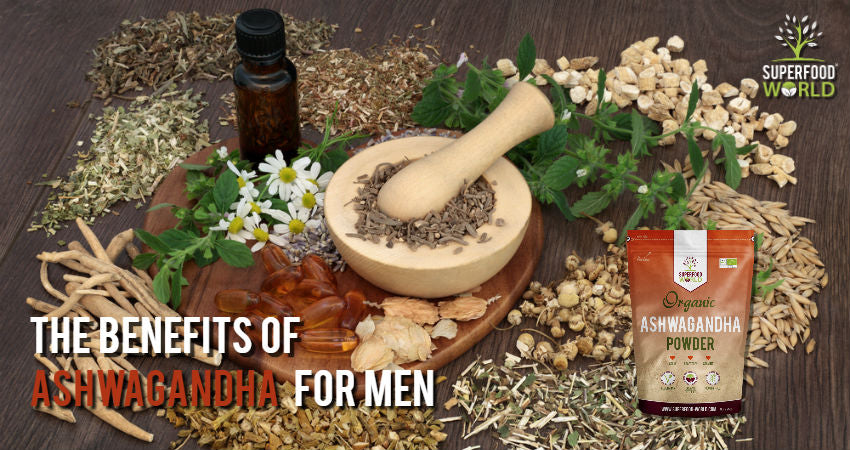 The Benfits of Ashwagandha for Men