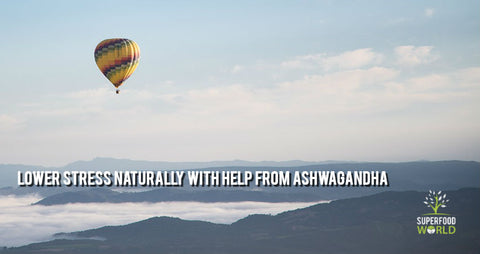 lower stress naturally ashwagandha