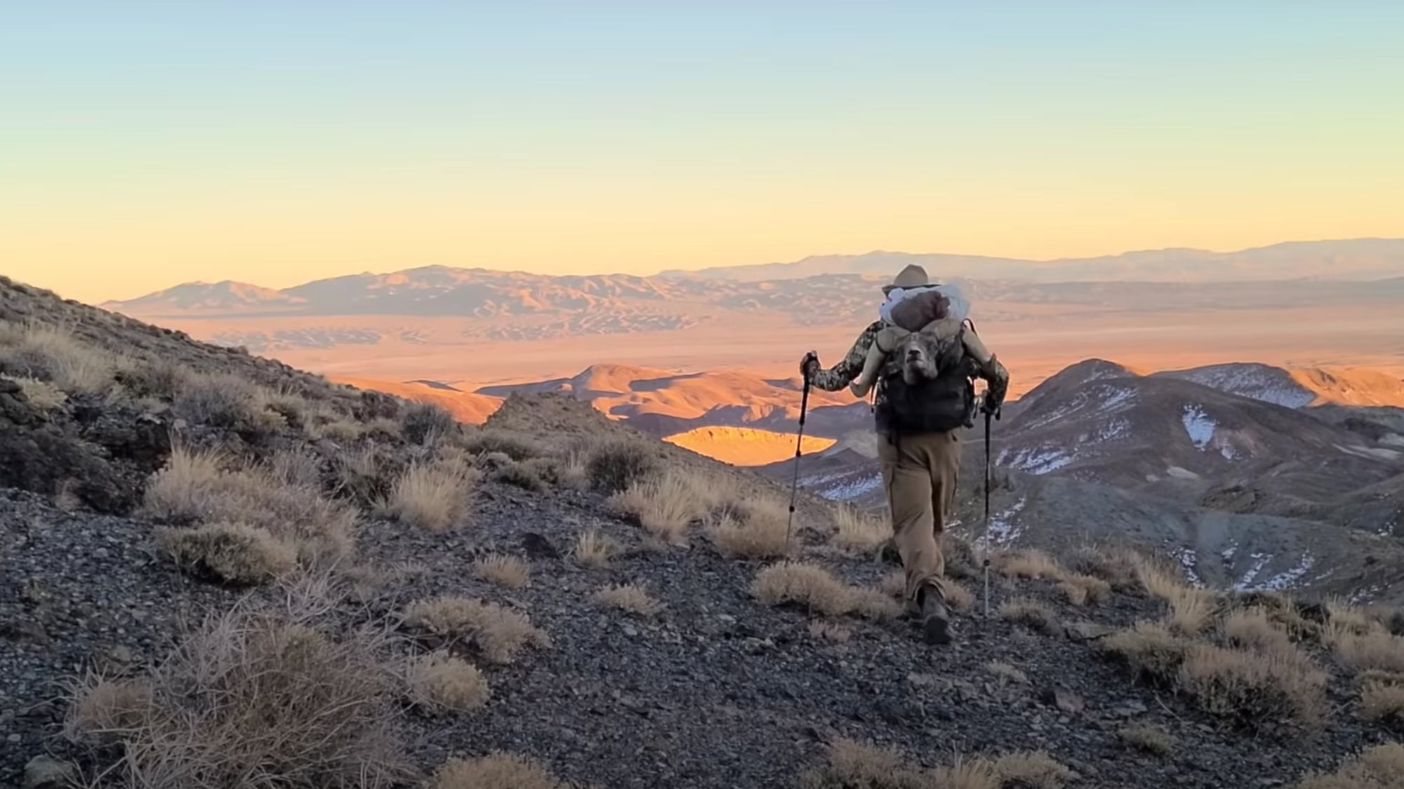 Nevada Desert Bighorn Sheep Hunt
