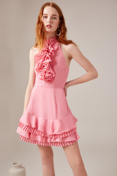 Big Picture Dress in Pink