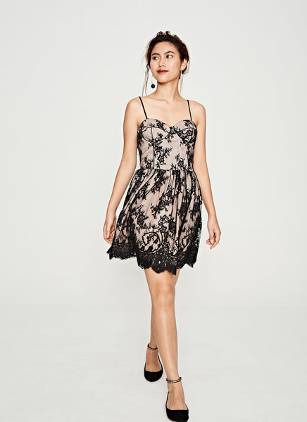 Lace Bustier Party Dress