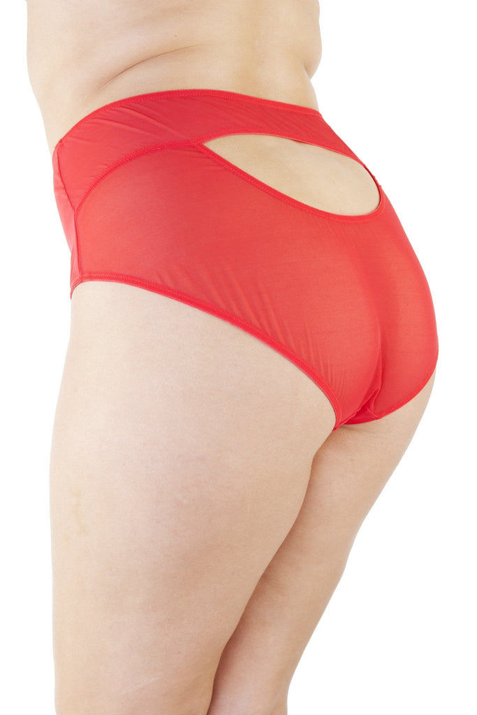Juliet Red Retro Brief Curve