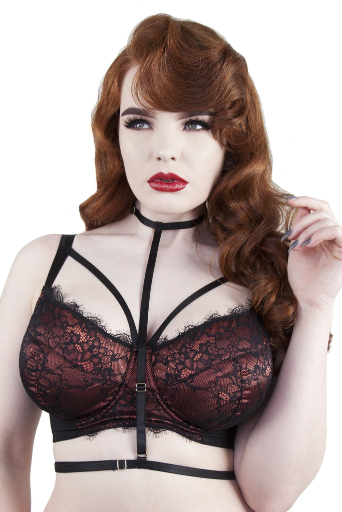 Irena Rust Satin & Lace Harness DD/E-K Bra