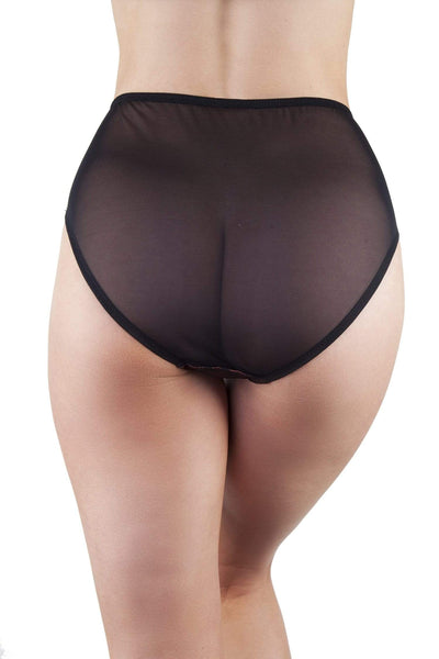 Irena Rust Satin & Lace High Waist Brief