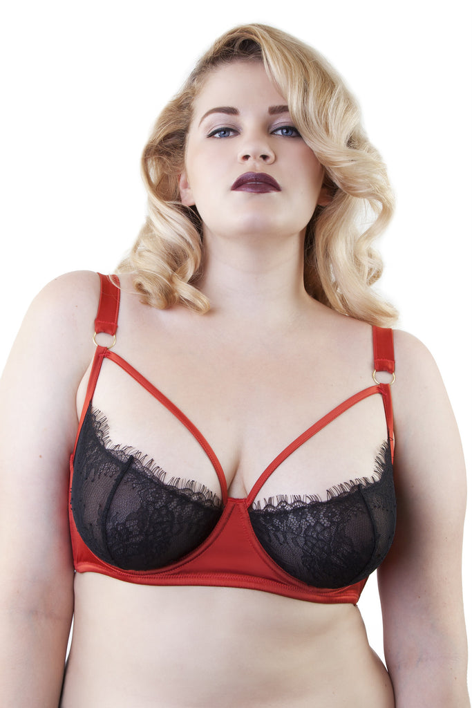 Tamara Rust and Black Lace Curve Bra