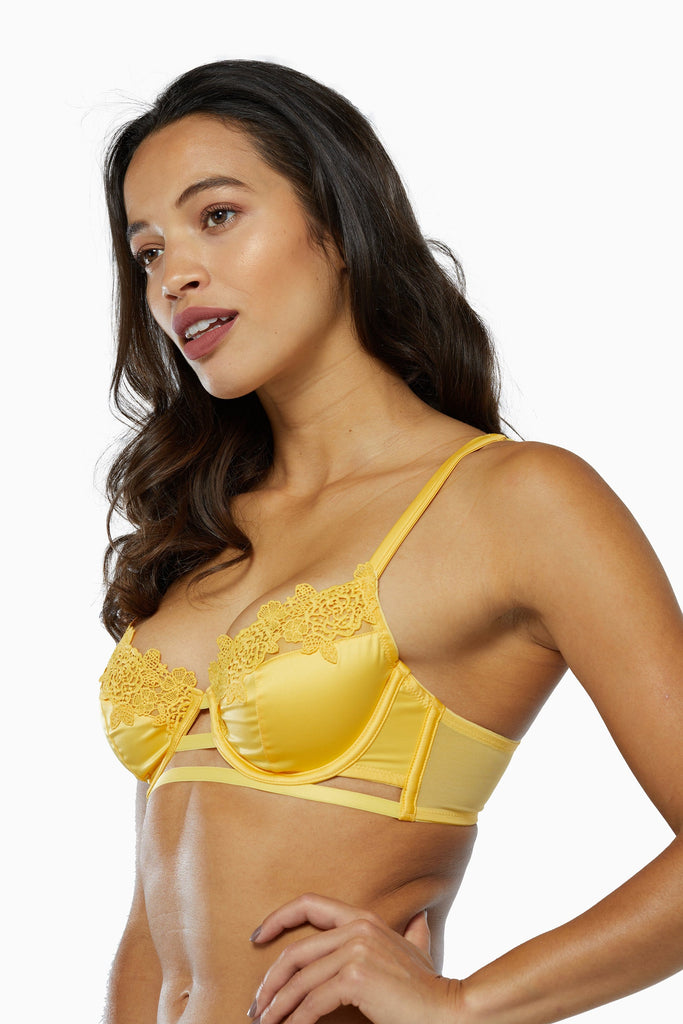 Playful Promises Vivienne Mustard Net Satin and Lace Trim Bra