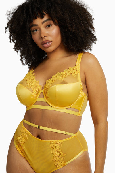 Playful Promises Vivienne Mustard Net Satin and Lace Trim Curve Bra