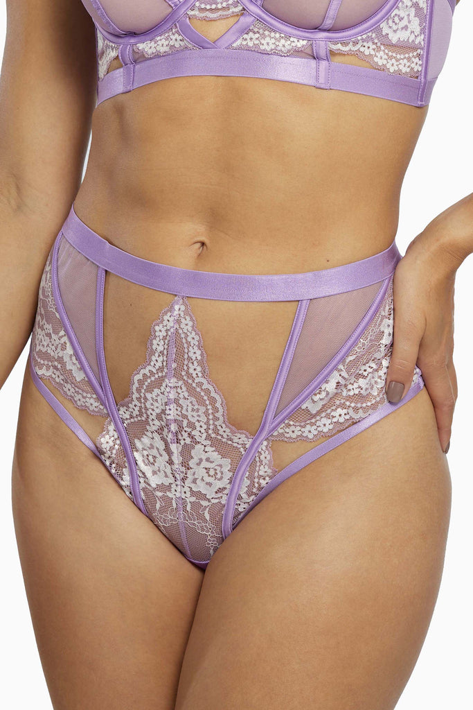 Fenella Lace and Net High Waist Brief Core