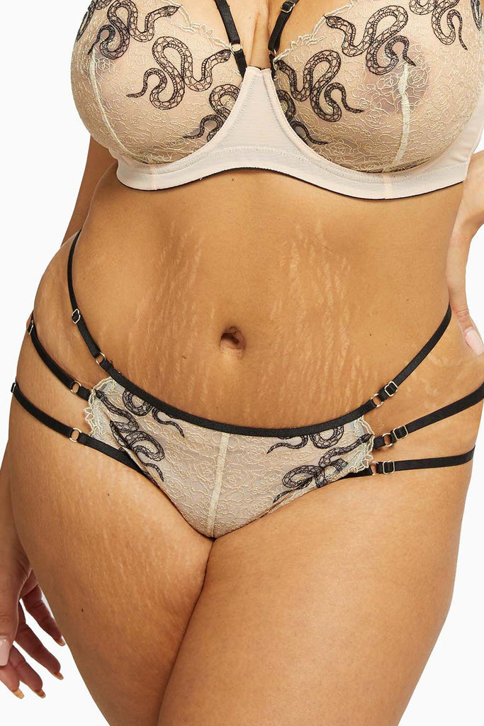 Dakota Snake Brief with Ring Details and Straps Curve
