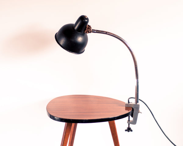 Industrial Adjustable Clamping Lamp