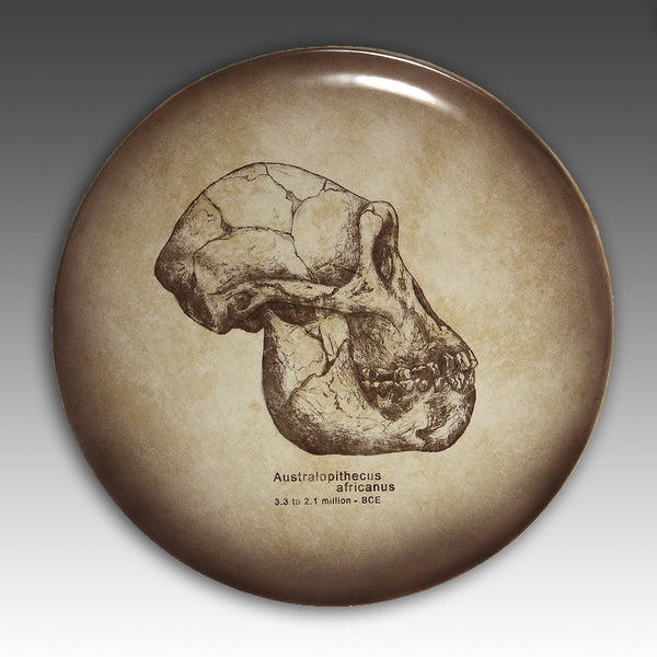Great Skull Gifts - The Early Man Series