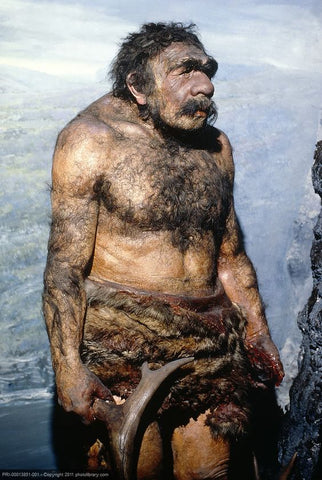 misguided Neanderthal picture