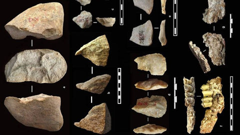 tools in China dated to 2.1 million years ago by Homo erectus