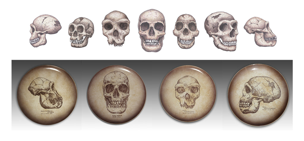 gifts for skulls