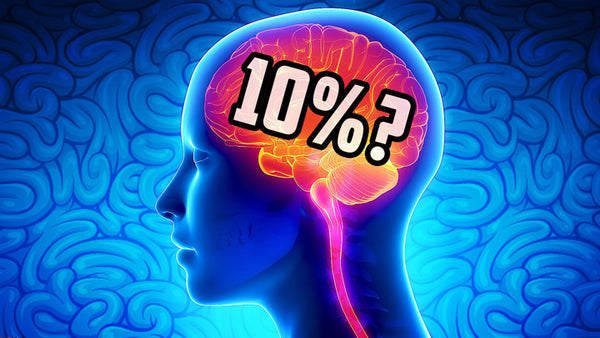 10% of the brain use