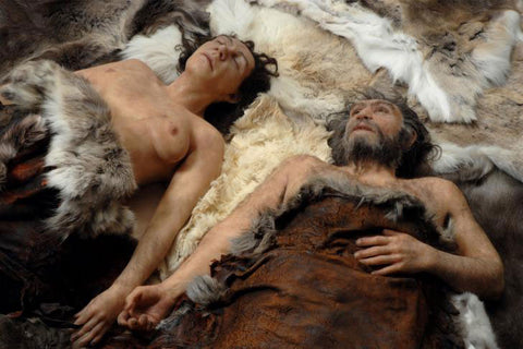 neanderthal and human have sex