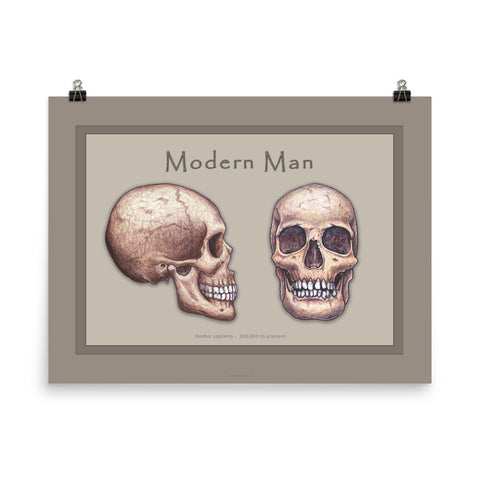 The Human Evolution series Modern Man Poster