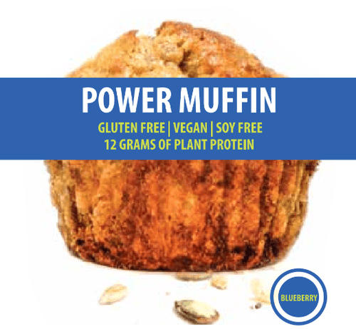 Blueberry Power Muffin