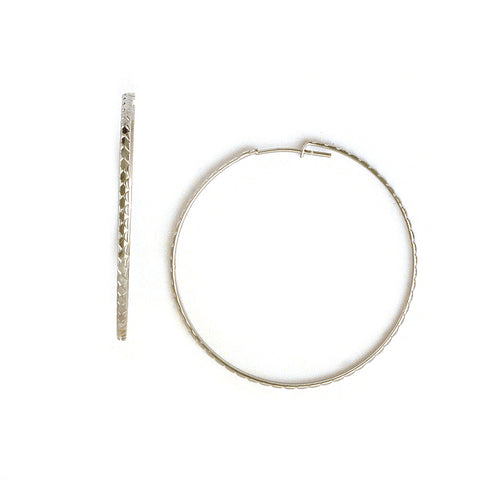 Hoop Earrings in Stainless Steel