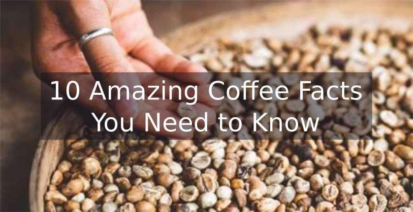 10 Amazing Coffee Facts You Need To Know