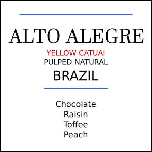 Brazil Alto Alegre Yellow Catuai Medium Roast