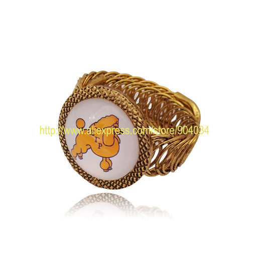 Sigma Gamma Rho Bangle - I Am Greek Life