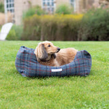 Tytherton Tweed Boxy Dog Bed