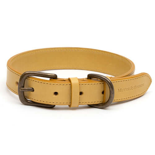 Mustard Leather Dog Collar