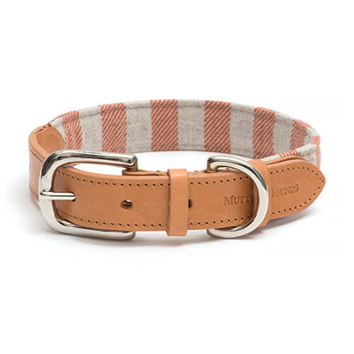Orange Stripe Brushed Cotton Dog Collar
