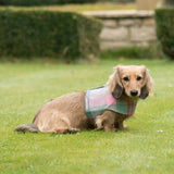 Macaroon Check Tweed Soft Dog Harness