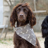Personalised Dog Neckerchiefs