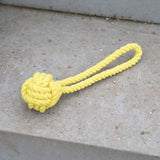 Rope Tug Dog Toy