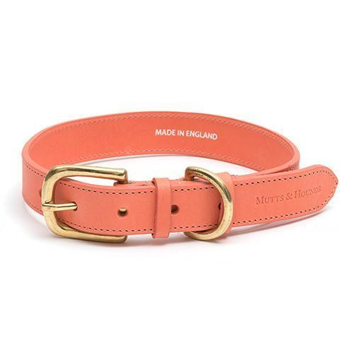 Mutts and Hounds Luxury Coral Leather Dog Collar