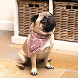 Mutts and Hounds Luxury Personalised Dog Neckerchiefs