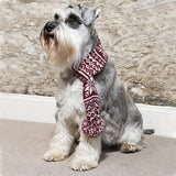 Mutts and Hounds Luxury Snowflake Dog Scarf - M/L