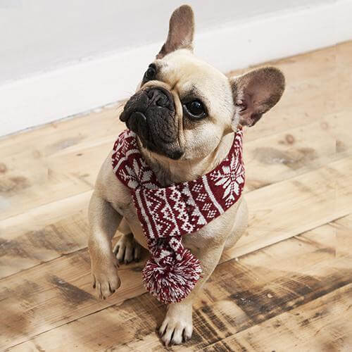 Mutts and Hounds Luxury Snowflake Dog Scarf - T/S