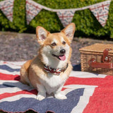 Mutts and Hounds Luxury Union Jack Bow Tie