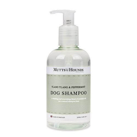 Ylang Ylang & Peppermint Dog Shampoo